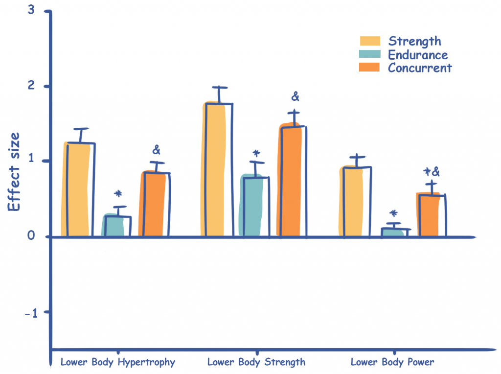 Muscle Growth Interference Effect Size of Concurrent Training
